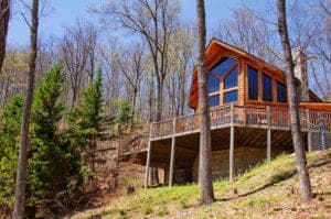 pet friendly cabin in pigeon forge