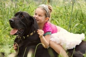 little girl and dog ready for a pet friendly Smoky Mountain vacation