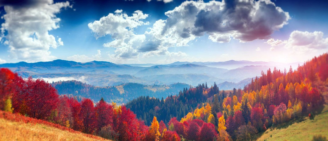 Beautiful fall colors in the Smoky Mountains.