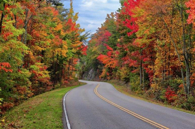 Beautiful fall colors along the Foothills Parkway in the Smoky Mountains.